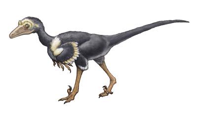 toroodon.jpg