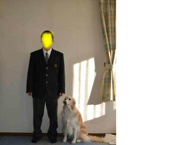 snap_katudon1121_20144021268.jpg