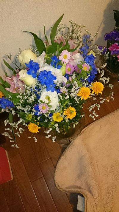 お花もらったよモカ