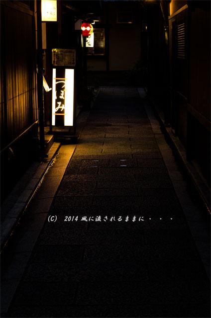 2014年8月 夜の祇園・花見小路通6