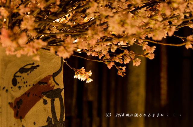 2014年 京都・東山花灯路7