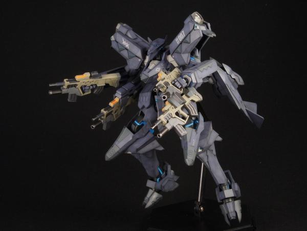 RaptorDSC02843.jpg