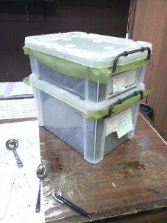 ヘラクレス♂♀の容器の比較