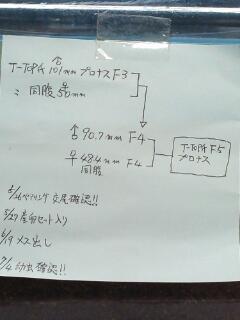 T-TOPプロナス血統構成2
