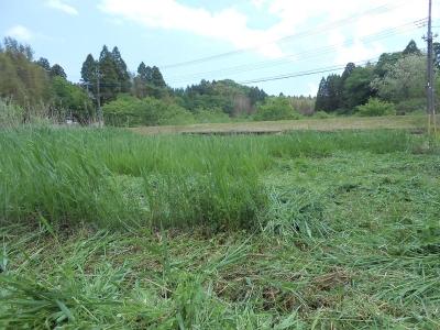 2014-_0516_yatsuda_0010_R.jpg