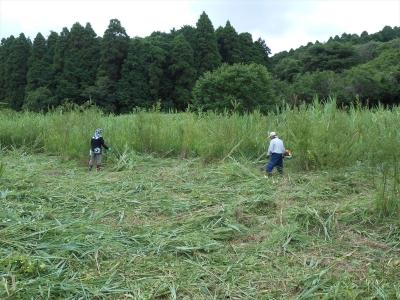2014_0719_yatsuda_0022_R.jpg