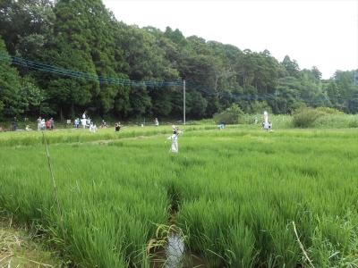 2014_0816_yatsuda_0008_R.jpg