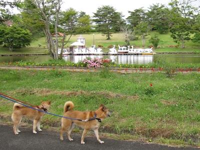 ニュージーランド村
