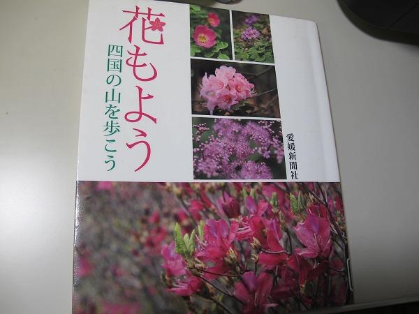 四国の花1