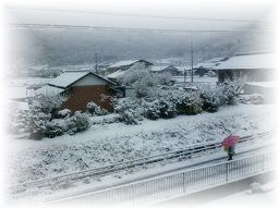 214 雪1 ブログ