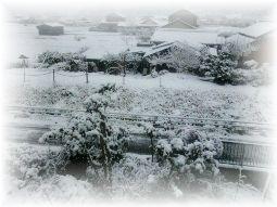 214雪2 ブログ