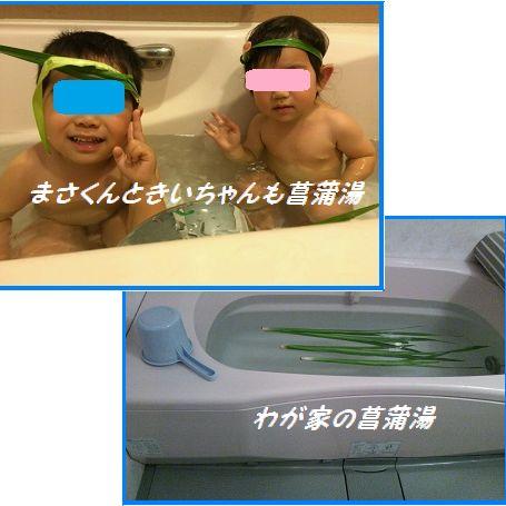 506 菖蒲湯 ブログ 孫たちも
