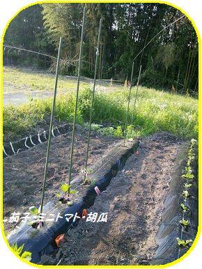 茄子など ブログ