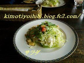 514サラダ ブログ