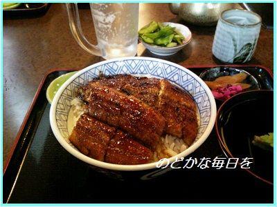 528うな丼 ブログ
