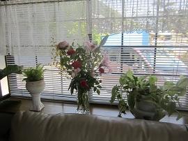 530 出窓に花 ブログ