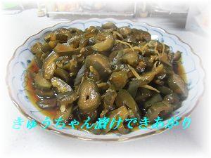 613きゅうちゃん漬け2 ブログ