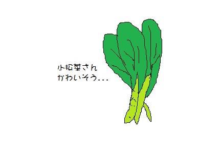小松菜さん