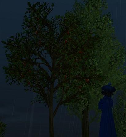 ダンバムーンゲート近くのりんごの木
