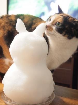 猫だるまと恋チュン