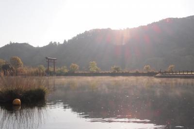 十何年かぶりの亀山ダム。