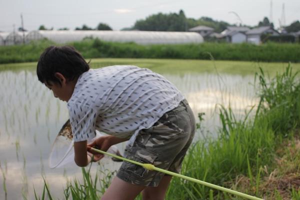 tokiomiyazaki (6)