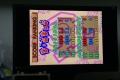 DSC02806.jpg