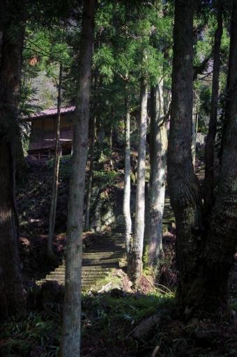 木漏れ日の佐毘売山神社