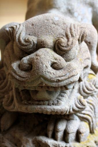八重山神社の狛犬