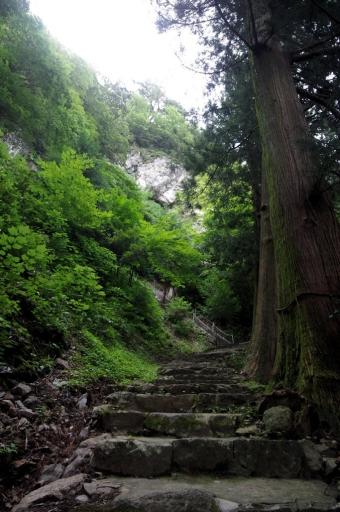八重山神社参道