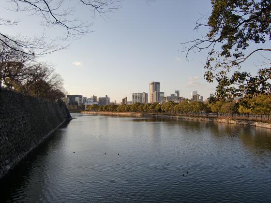 大坂城公園梅林2014-24