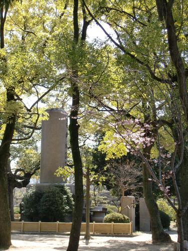 大阪城公園梅林20132-15