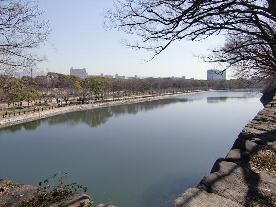 大阪城公園梅林20132-18