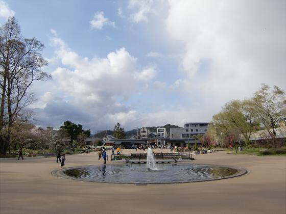 京都府立植物園の桜2014-11