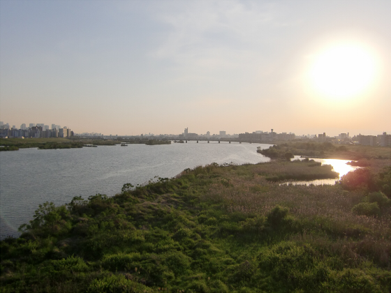 菅原城北大橋06