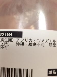 20140721213419785.jpg