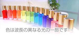 虹色ハウス