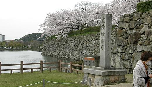 姫路城観桜会(2)-1