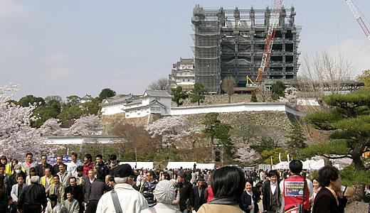 姫路城観桜会(2)-3