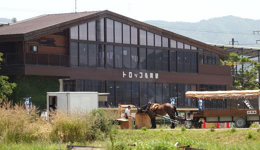 トロッコ列車@嵯峨野(3)-4