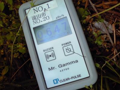 我が家の坂下草地022102