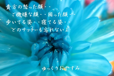 IMG_2640[1]