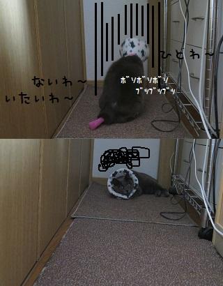 IMG_4030[1]