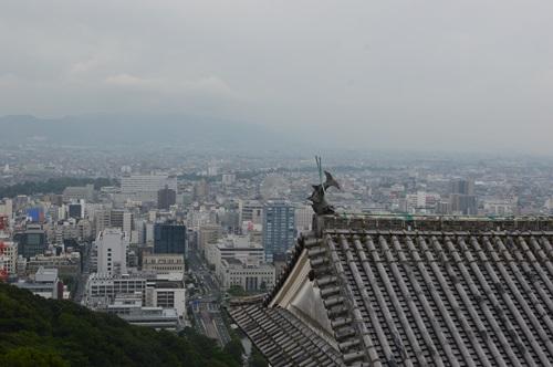 愛媛県松山 (196)