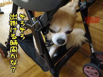 yuruiro20140803_i001