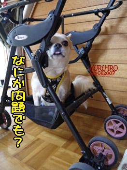 yuruiro20140803_i002
