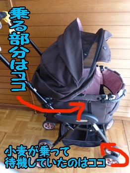 yuruiro20140803_i003