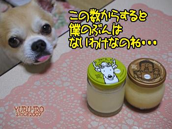 yuruiro20140803_i008