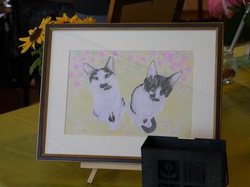 2014.5 猫展~♪5
