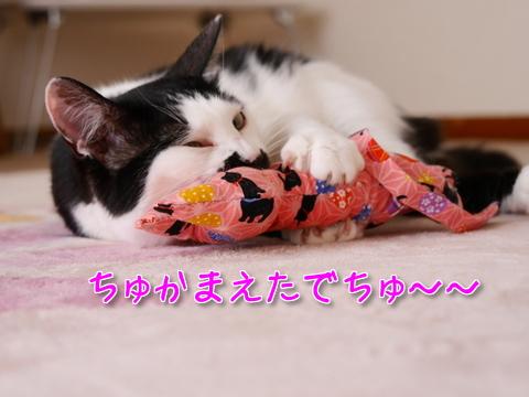しま汁キッカーまちゅり~♪後編9